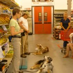 Gibson & Cody - Demo at Tractor Supply