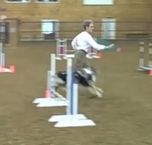 rds jumpers Capture