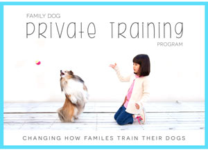 Changing the way families train theri dogs