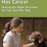 When Your Dog Has Cancer – A Resource for You
